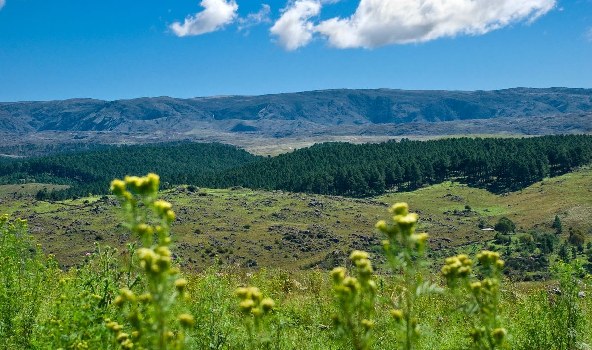 Las sierras de los Comechingones desde la Posada Loma del Tigre